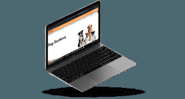 toko online laptop mockup