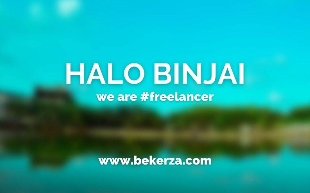 Jasa Pembuatan Website Binjai