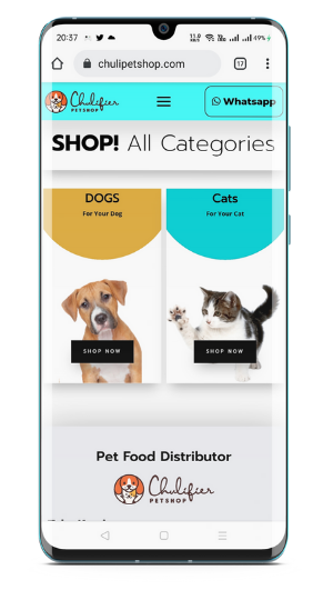 buat website toko online chulipetshop yang menajdi distrributor petshop medan